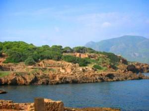 Histoire pour les jeunes - Sainte Salsa, martyrs d'Algérie