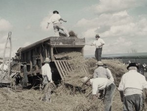 Histoire pour les enfants - le blé et l'eucharistie - batteuse