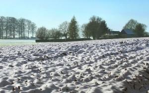 l'hostie, pain des hommes - champs sous la neige
