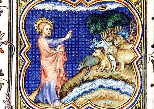 Conte et récit pour les enfants - La création du chien - Marie Noël