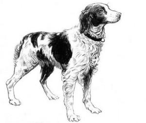 Légende de la Création - chien epagneul s'adressant à Dieu