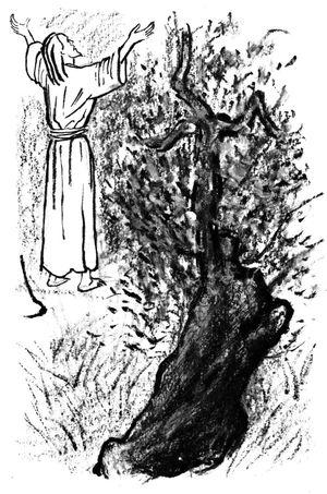 Eplication de la messe pour le catéchisme - Jésus priant au Jardin des Oliviers