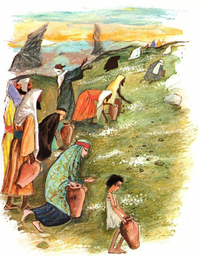 Récit biblique pour les jeunes - Le peuple juif ramasse la manne dans le désert