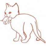 Petit chat que protégeait Madeleine Barat