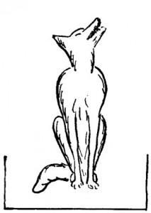 Le chien gris de Don Bosco