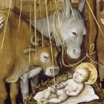 Légende des animaux de Noel : Sous le regard du boeuf et de l'âne