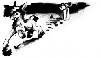 L'âne de la Crèche à Noël pour les petits enfants