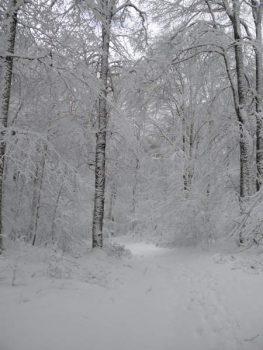 Sacrifice raconté aux enfants - Tempête de neige en montagne
