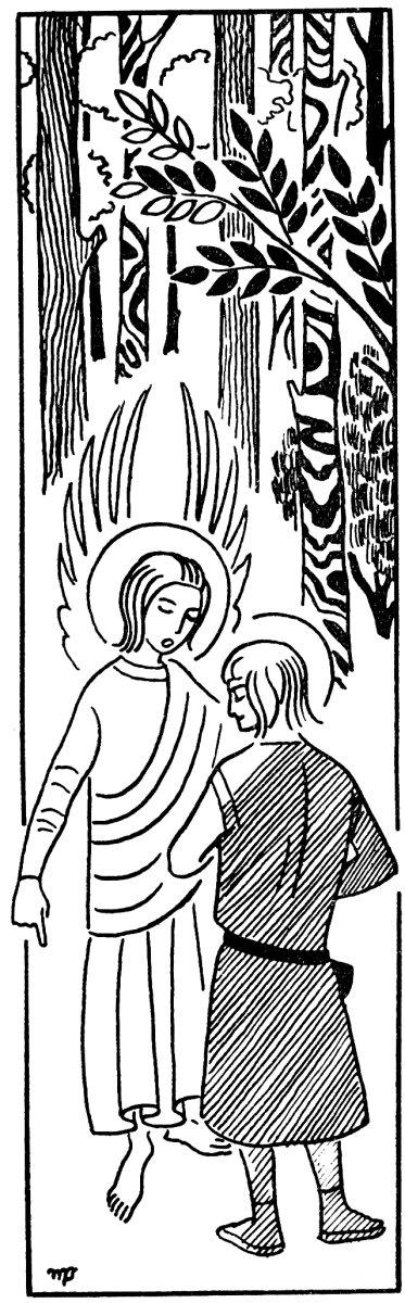 Histoire pour les veillées scoutes, louveteau, jeannette et routier - Saint Patrick, Devant lui son ange resplendissant.