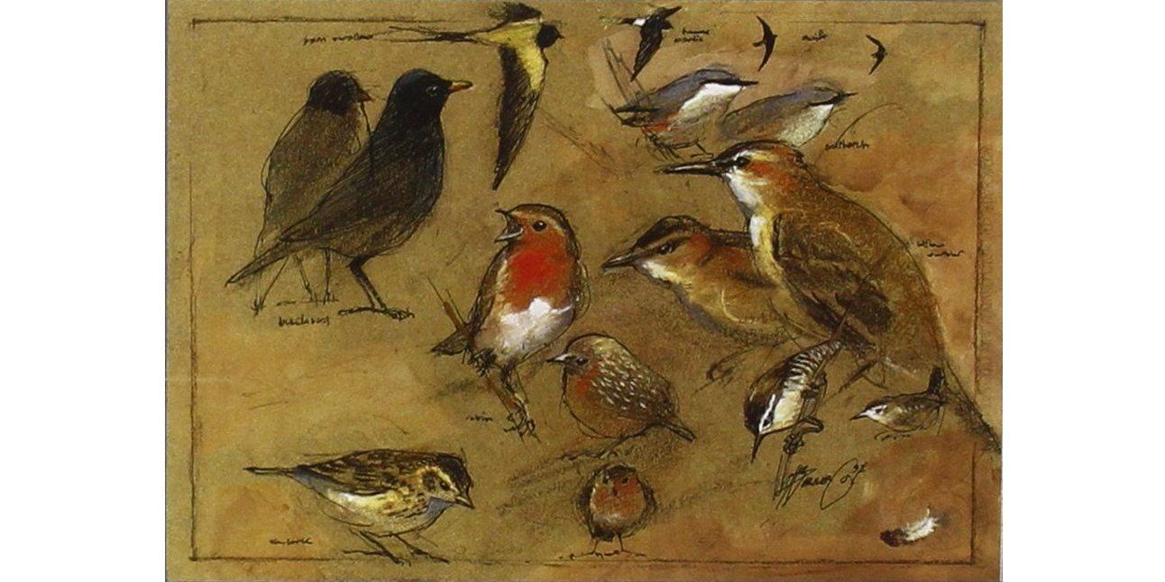 Le conte des oiseaux de la crèche